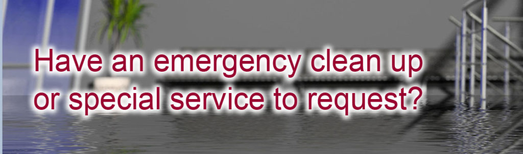 Emergency Water Extraction Buena Park