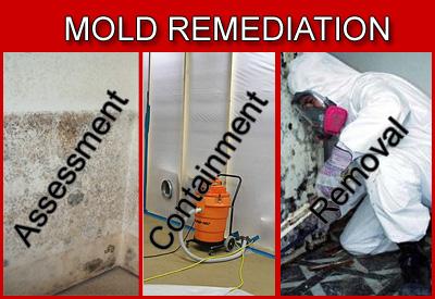 mold remediation service brea