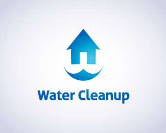 Water Cleanup Lake Forest