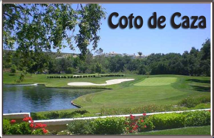 Coto De Caza Water Damage