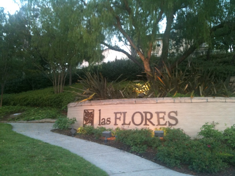 Las Flores Water Damage Company