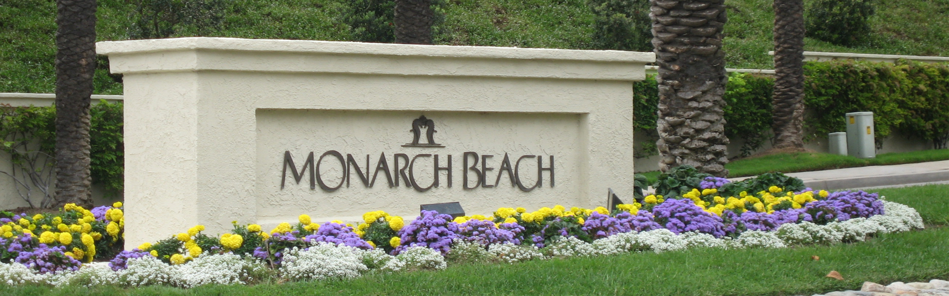 Water Damage Monarch Beach, CA